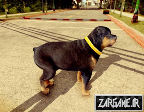 دانلود مد سگ GTA V برای بازی (GTA 5 (San Andreas